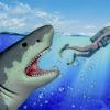 筏 生存 水下的 鲨鱼