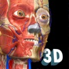 Anatomy Learning - 3D Anatomy