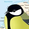 Spiny Software Ltd - Vogels in Nederland Pro kunstwerk