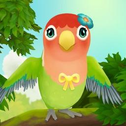 Bird BnB