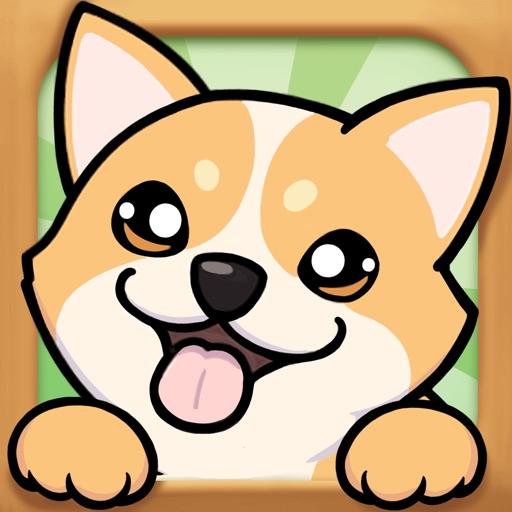 我的狗狗-奇奇