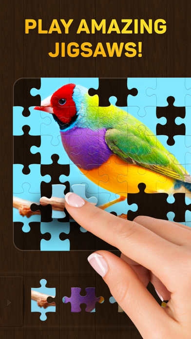 Jigsaw Puzzles for You free Resources hack