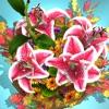 Flower Domain