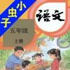 小虫子(人教小学语文五年级上册)