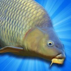 Carp Fishing Simulator app critiques