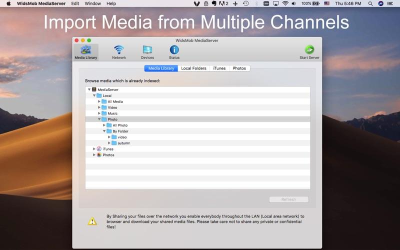 WidsMob MediaServer screenshot 1