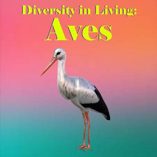 Diversity in Living: Aves