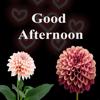 Vikrambhai Desai - Good Afternoon GIF Images Card artwork