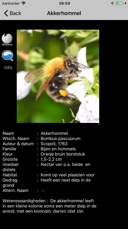 Insecten screenshot-1