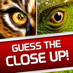 Guess the Close Up - Pics Quiz
