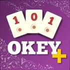 101 Okey + icon