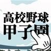 野球ゲーム 素振りで甲子園!! プロスピリット