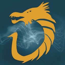 Dragon Vision