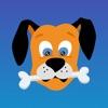 犬のモニタ : ペット アニーが見るには、カメラ - iPhoneアプリ