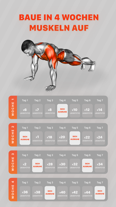 messages.download Muscle Booster Workout Planner software