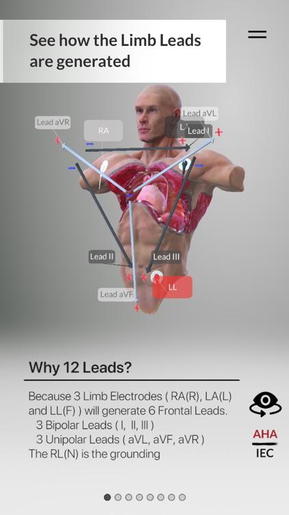 3D ECG Leads screenshot-9