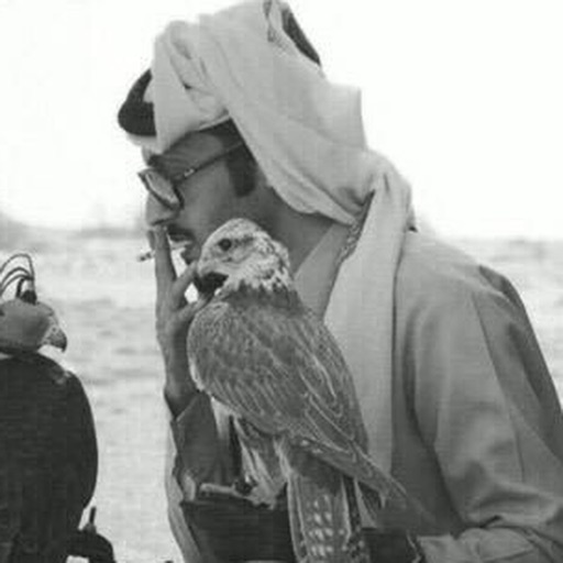 شعر سعودي بدوي بدون نت