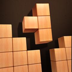 Wood Puzzle 3D - Fun Classic