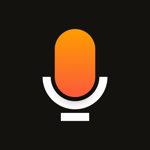 Stereo – Общение LIVE подкасты на пк
