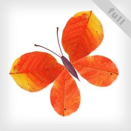 Leaves(Full):Art Game for Kids