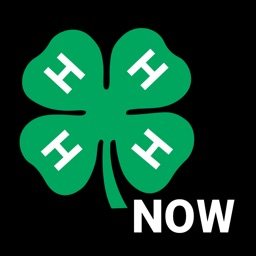 4-H Now