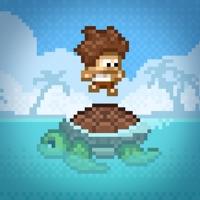 Codes for Turtle Hop Hack