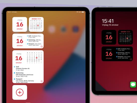 Calendar 366 iPad app afbeelding 2