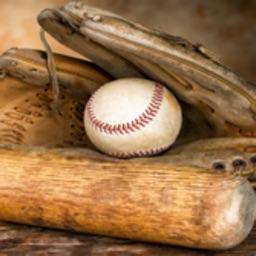 Baseball Fans Club