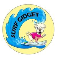 Codes for Surf Gidget the Pug Hack