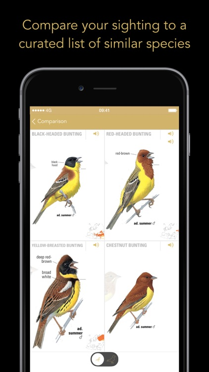 Collins Bird Guide screenshot-3