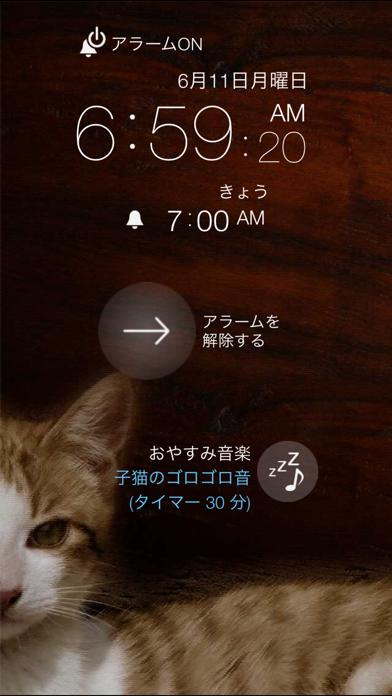 猫目覚まし(=^・ω・^=)