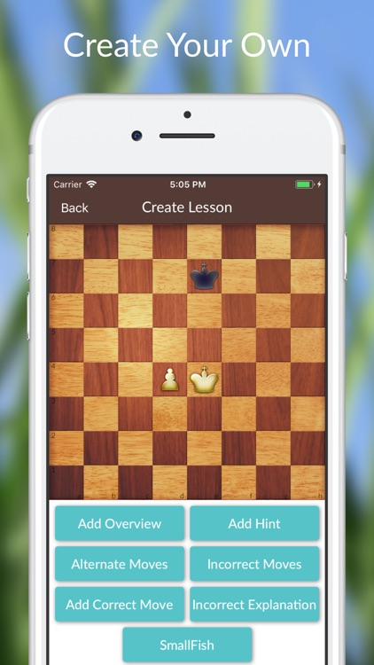 Chess Tactics and Lessons screenshot-3