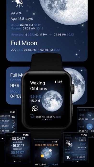 Deluxe Moon Pro • App & Widget ScreenShot2