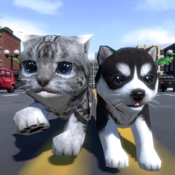 Cute Pocket Cat And Puppy 3D