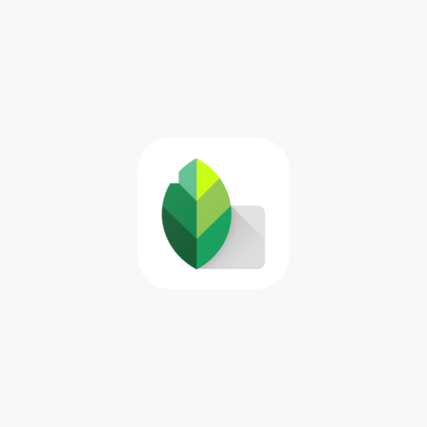 snapseed equivalent for pc