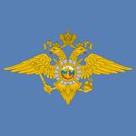 МВД России на пк