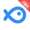 财鱼管家Pro—全资产账本