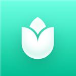 PlantIn: Plant Identifier pour pc