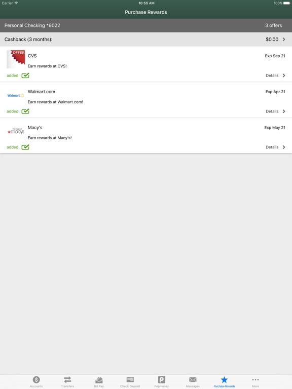 NEFCU Mobile App iPad