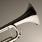 App Icon for iFretless Brass App in Dominican Republic IOS App Store