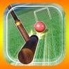 ゲームバラエティー ゲートボール - 有料新作のゲーム iPad