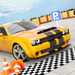 Multi Car Parking Simulator 3D