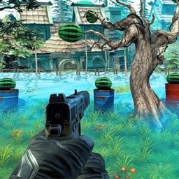 Gun Shooting Fruit Expert