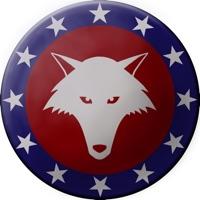 Codes for Congresswolf Hack