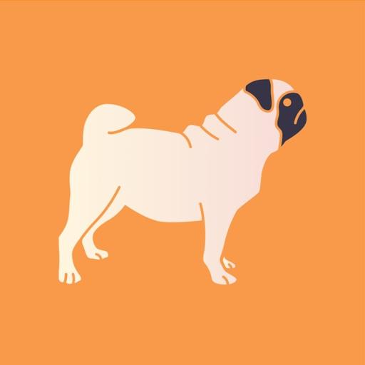 SMS Filter for Doge