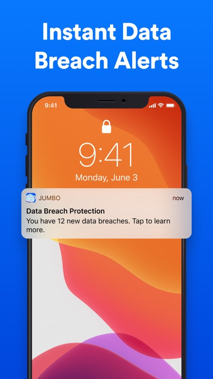 Jumbo: Security + Privacy