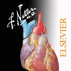 Netters Atlas Ebook
