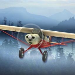 Airplane Fly Bush Pilot