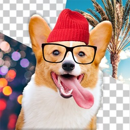 Dog Photo Editor