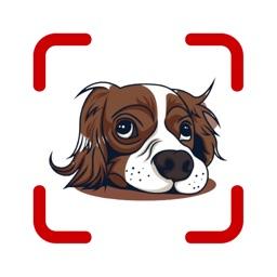 Dog Scanner: Scan by camera